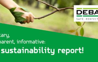 Sustainability report blog